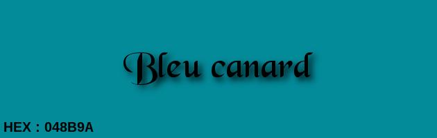 Ral Bleu Canard Images - Joshkrajcik.us - joshkrajcik.us