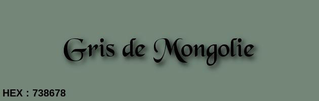Gris de Mongolie