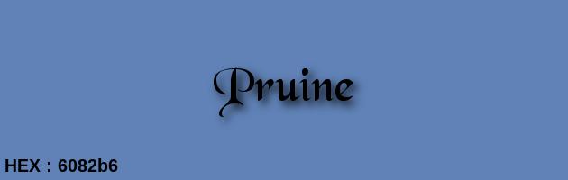 Pruine